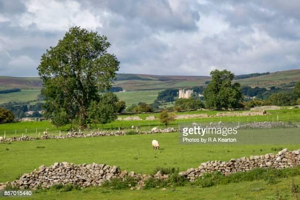 Bolton castle seen from fields near Leyburn, Yorkshire Dales