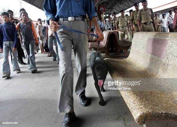 Bomb Hoax Bomb Scare Jack sniffer dog from railway bomb squad checks Vile Parle platform after a bomb hoax disrupted Western Railway services on...