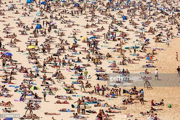 Bondi Beach on New Year's Day