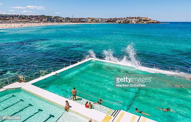 Bondi Icebergs Club pool