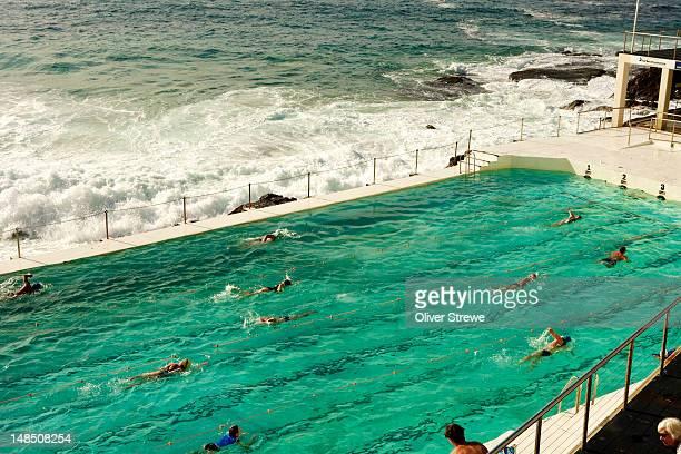 Bondi Icebergs pool.