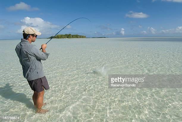 bonefishing in a blue lagoon