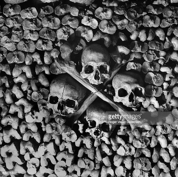 Bones in the catacombs of Paris FA17223