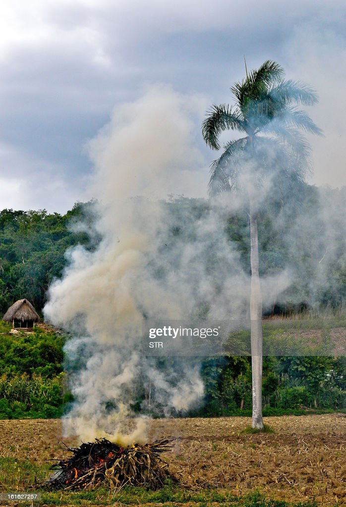 A bonfire is seen on a farm near Havana on February 13, 2013. AFP PHOTO/STR