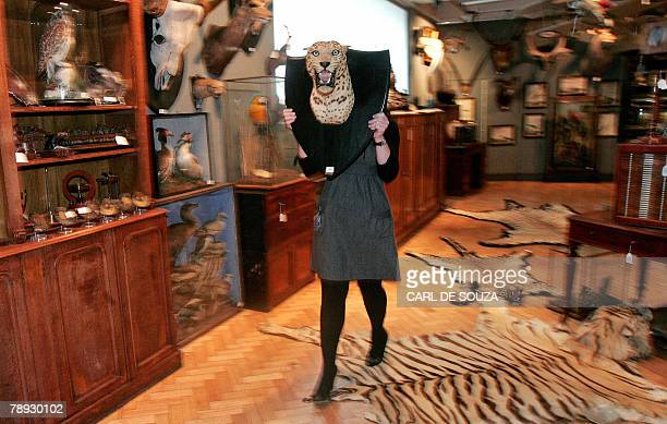 A Bonhams employee walks with a stuffed jaguar head inside their collection room in London 14 January 2008 The piece is part of an auction sale...