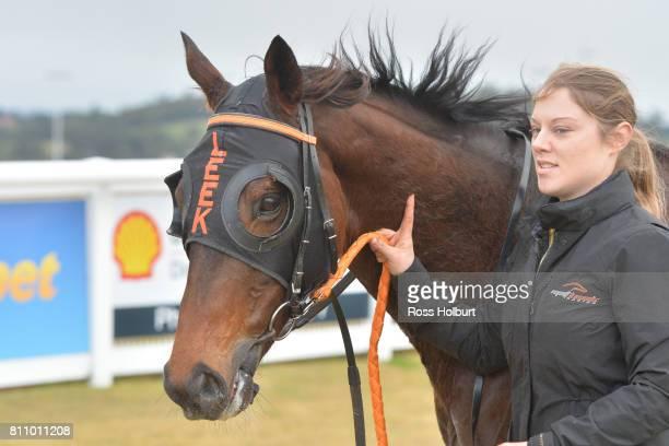 Bonnard after winning the Thrifty BM58 Handicap at Racingcom Park Synthetic Racecourse on July 09 2017 in Pakenham Australia