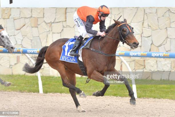 Bonnard ridden by Nathan Punch wins the Thrifty BM58 Handicap at Racingcom Park Synthetic Racecourse on July 09 2017 in Pakenham Australia