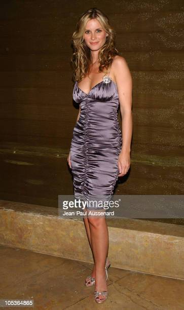 Bonnie Somerville during The 61st Annual Golden Globe Awards HBO Party at Beverly Hilton in Beverly Hills California United States