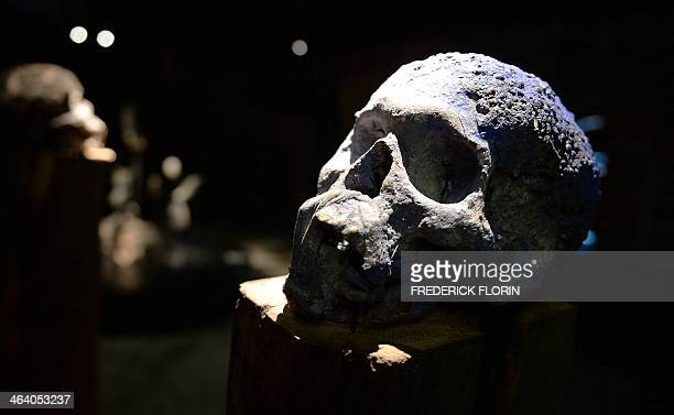 Bonoko sorcerers' skull is on display in the new museum of the voodoo arts on January 10 2014 in Strasbourg eastern France Widely underestimated in...
