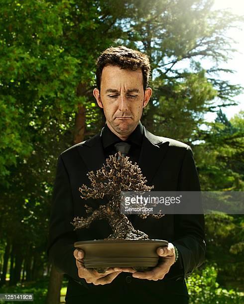 Bonsai principale avec arbre mort.