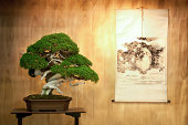 A very old bonsai tree on a table with a landscape painting hanging on the wooden wall behind.