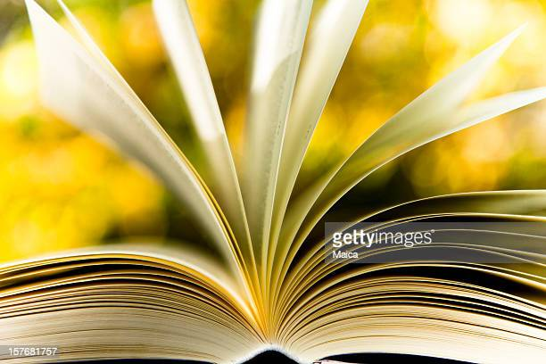 Book and nature concept