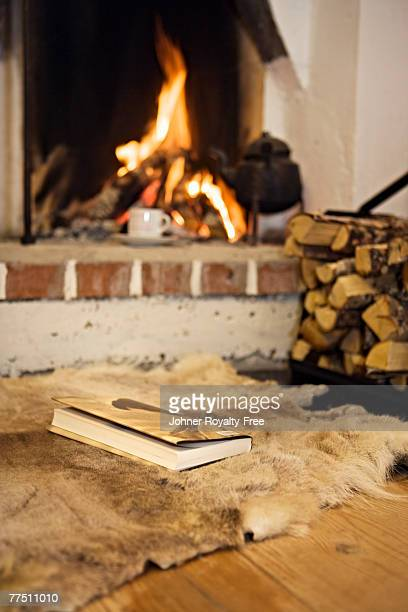 A book in front of a fireplace Sweden.