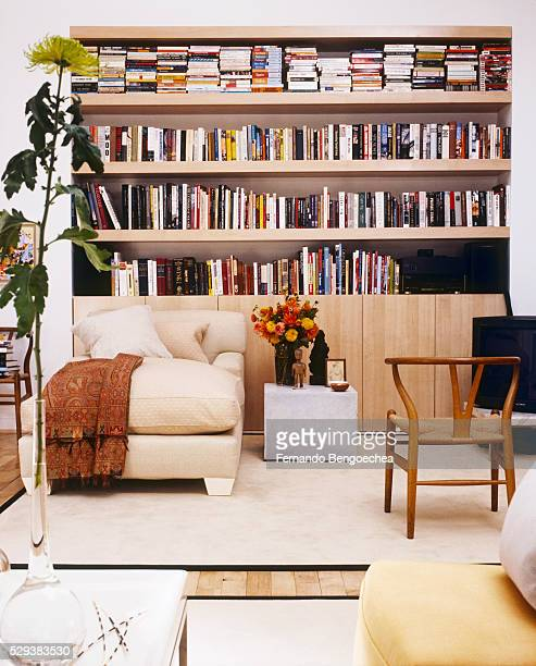 Bookcase and Chaise Longue in Living Room