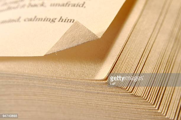 Un segnalibro a una pagina