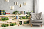 Books and green plants on wooden shelf in cozy lounge