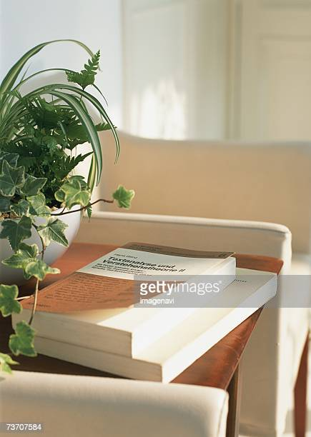 Books and potted plant