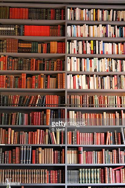 Books arranged neatly on shelf
