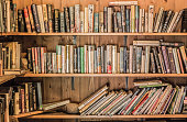Books on a bookshelf