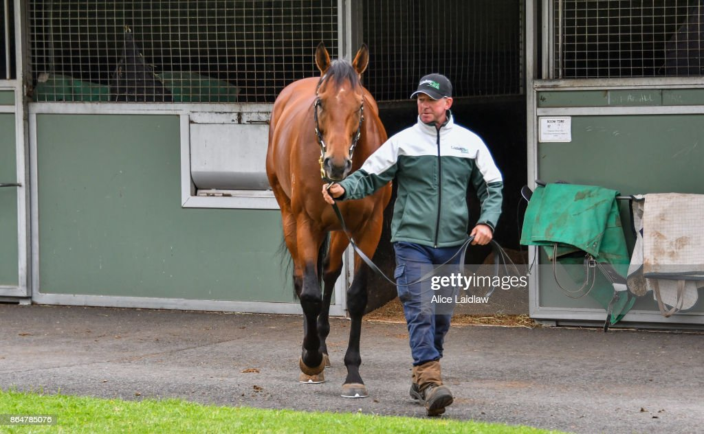 Caulfield Cup Winner