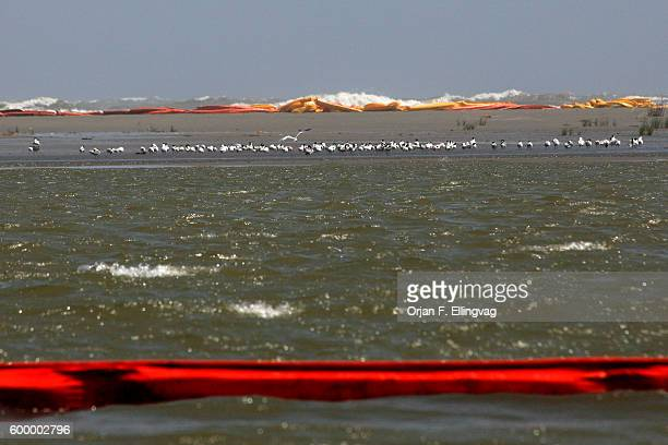 Booms laid out to contain possible oil spill reaching the shores of the South Pass area of the Mississippi delta are tossed ashore by the high wind...