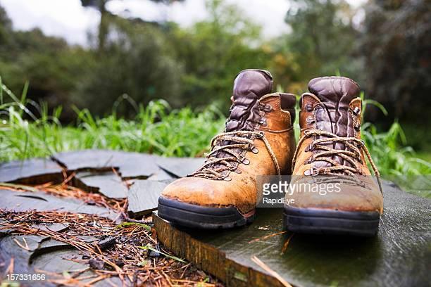 Stiefel im Wald