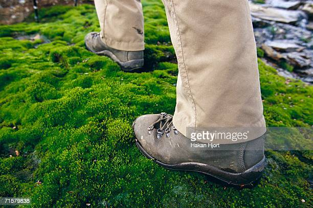 Boots walking over moss.