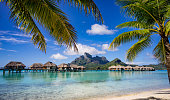 Beautiful scenic view of Bora Bora framed by palm trees