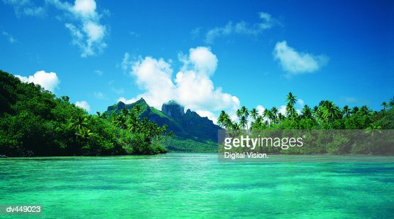 french polynesia singles Find meetups about singles and meet people in your local community who share your interests.