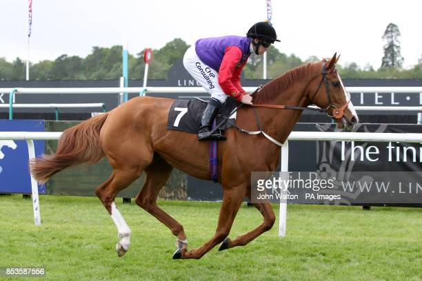 Border Legend ridden by Jim Crowley goes to post for the Weatherbys 'My Stable' Handicap