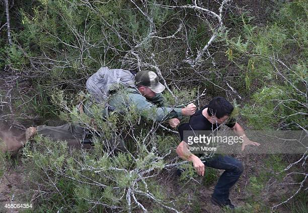 S Border Patrol agent tries to tackle an undocumented immigrant in dense underbrush on September 9 2014 near Falfurrias Texas He missed but the...