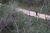 mcallen tx us border patrol agent