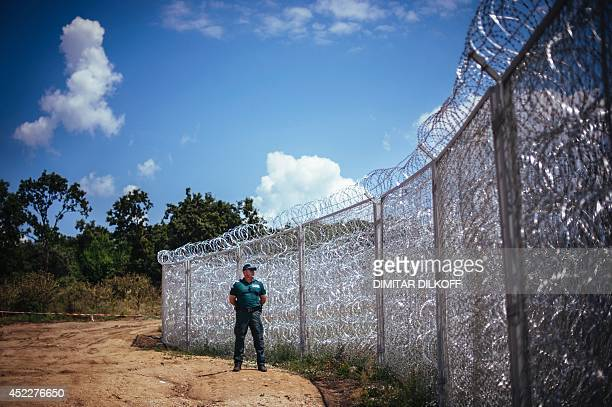 A border policeman stands next to a barbed wire wall on the Bulgarian border with Turkey near the village of Golyam Dervent on July 17 2014...