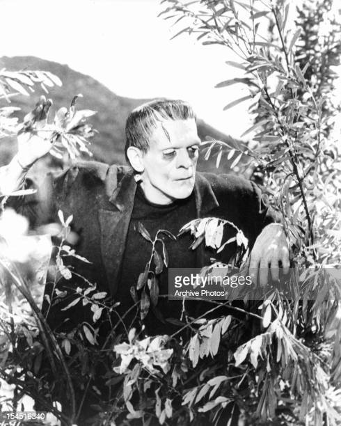 Boris Karloff as the monster out in the bushes in a scene from the film 'Frankenstein' 1931