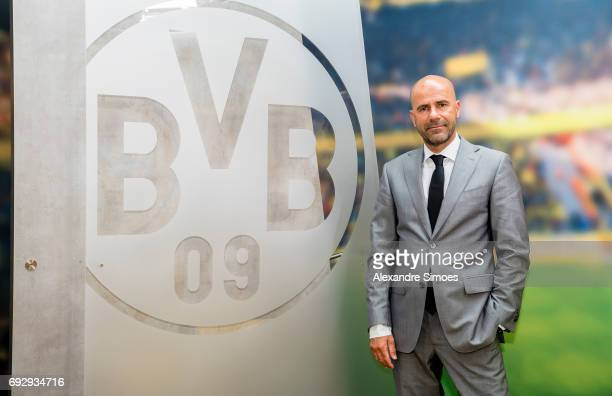 Borussia Dortmunds new head coach Peter Bosz at Signal Iduna Park on June 6 2017 in Dortmund Germany