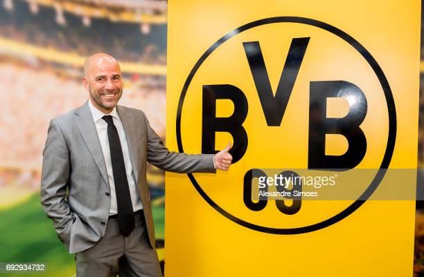 Borussia Dortmunds new head coach Peter Bosz at Signal Iduna Park on June 6 2017 in Dortmund Germany