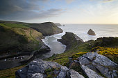 boscastle at sunset in Cornwall. a view of the atlantic ocean with gorse growing on the cliff