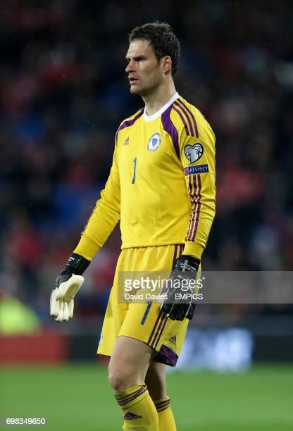 Bosnia Herzegovina goalkeeper Asmir Begovic
