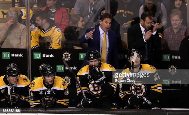 Boston Bruins Interim head coach Bruce Cassidy gestures during the game The Boston Bruins host the Washington Capitals in the regularseason finale at...