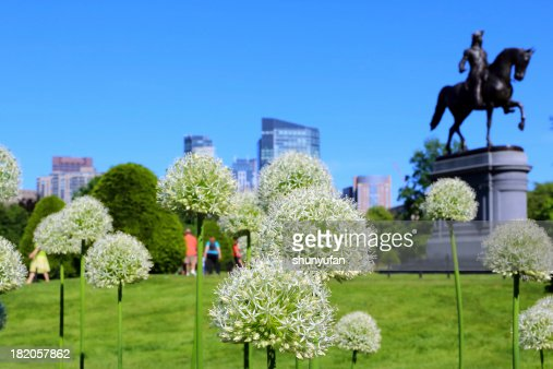 Boston: Downtown