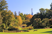 Beautiful Botanic Gardens cityscape in Melbourne Australia