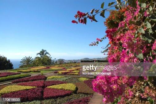 Botanical Garden, Funchal, Madeira