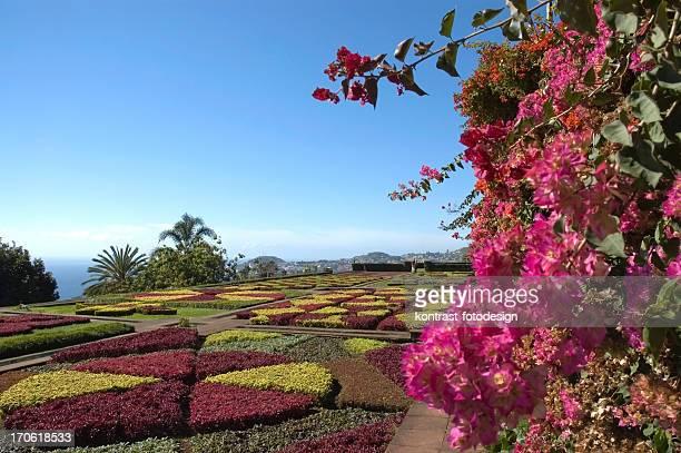 Jardim botânico, Funchal, de Madeira