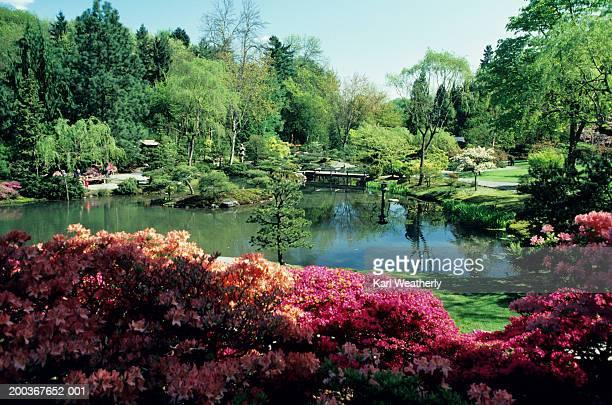 Botanical garden in summer