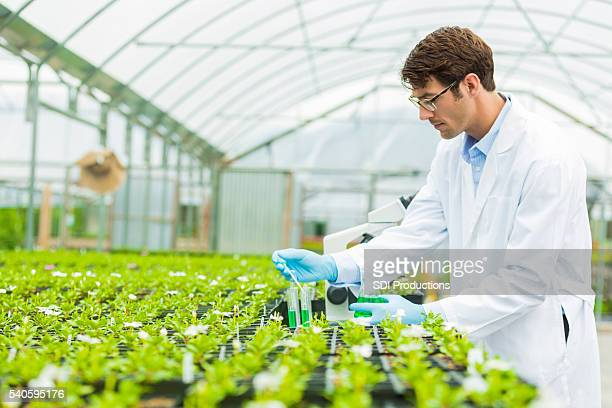 Botanist working in test lab