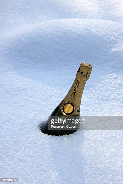 Bottle of champagne chilling in deep snow