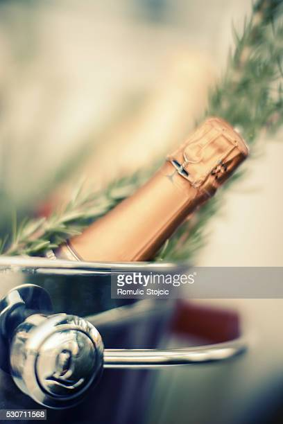 Bottle of champagne in ice bucket, close-up