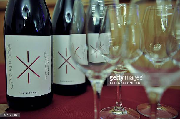Bottle of Hungarian red wine 2008 Pinot Noir from the Etyek Kuria winery are displayed on November 11 2010 in Budapest The wine was shown as part of...