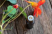 A bottle of nasturtium tincture with fresh blooming Tropaeolum majus plant