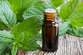 A bottle of essential oil with fresh peppermint twigs